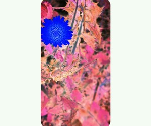arte and flower image