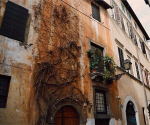 architecture, orange, and trastevere image