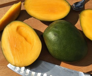 theme, fruit, and mango image