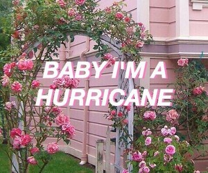 pink, hurricane, and grunge image