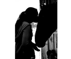 horse, horses, and inspiring image