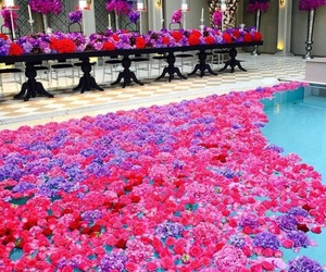 flowers, beautiful, and pool image