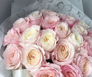 bouquets, peonies, and pink image