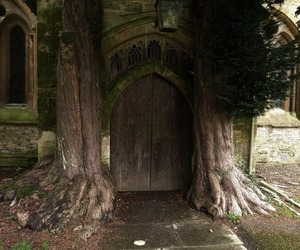 door and tree image
