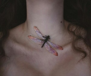 aesthetic, brunette, and dragonfly image