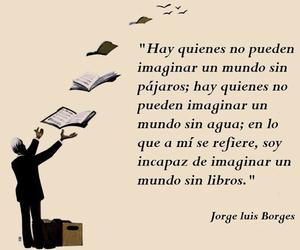 book, frases, and borges image