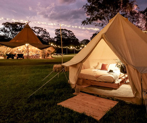 camping, paradise, and wild image