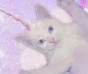 cat, unicorn, and pastel image