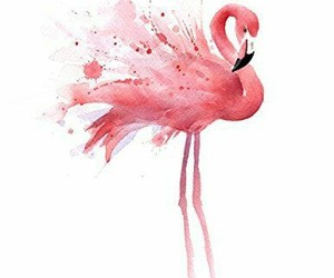 flamingo and watercolor image