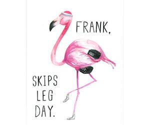 flamingo, funny, and humor image