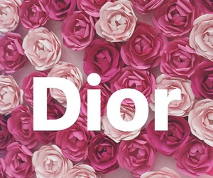 dior, flower, and pink image