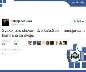 balkan, tweet, and kafa image