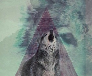 mountains, triangle, and wolf image