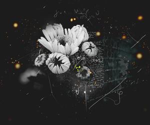 overlay and editing image