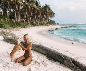 beach, dog, and girl image