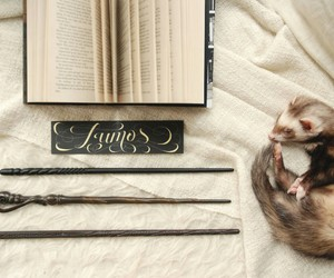 books, fandom, and ferret image