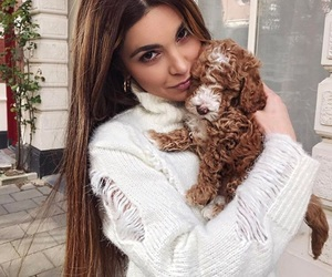 dog, style, and negin image