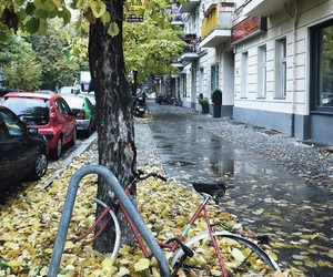 autumn, berlin, and germany image
