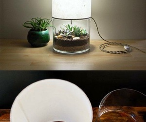 "plant"" ""light image"