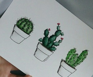 art, cactus, and drawings image
