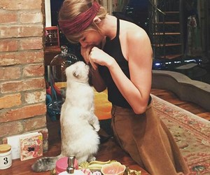 beautiful, blonde, and cats image