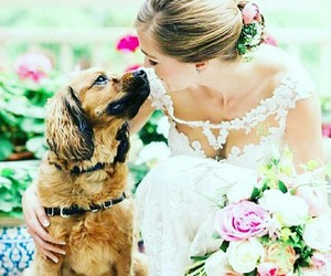 dog, flowers, and friendship image