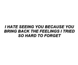 feelings and hate image