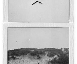 lemony snicket, asoue, and polaroid 600 image