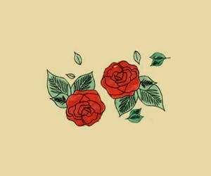 header, rose, and article image