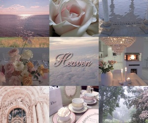 flowers, mood board, and serene image