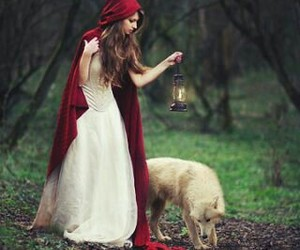fantasy, forest, and red image