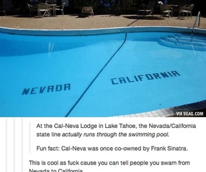 funny, tumblr, and california image