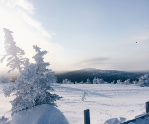 beautiful, finland, and levi image