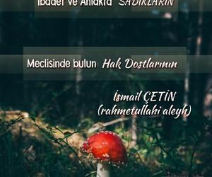 islam, dost, and güzel sözler image