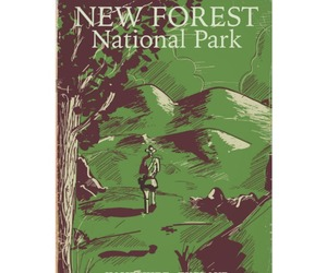 New Forest, new forest national park, and new forest uk image