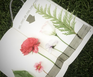 flowers, journal, and outside image
