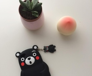 plants, bear, and minimalist image