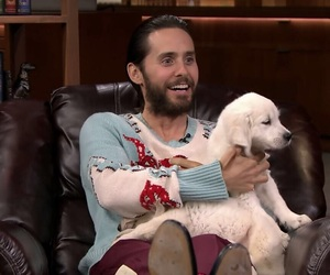 celebrity, puppy, and jared leto image
