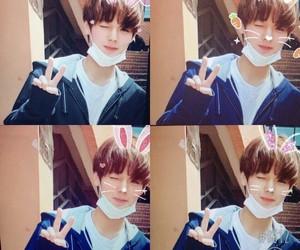 jihoon, park, and wanna one image