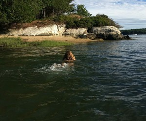 girl, water, and вода image
