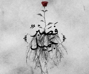 arabic, allah, and quotes image