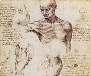 drawing, art, and Leonardo da Vinci image
