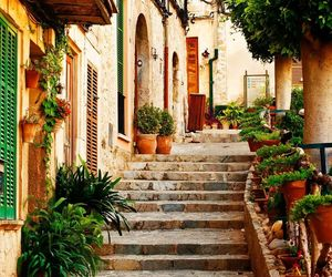 beautiful, plants, and spain image