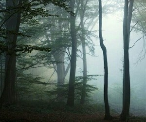dark, Dream, and fantasy image