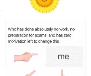 me, no, and study image