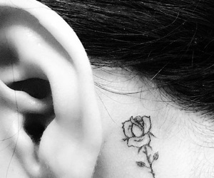 black and white, ear, and rose image