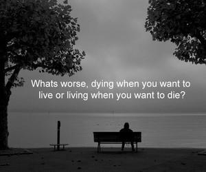 sad, dying, and life image
