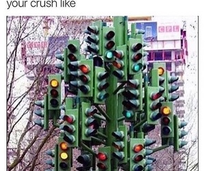 funny, crush, and meme image