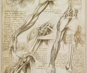 art, drawings, and human image