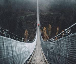 bridge, travel, and traveling image